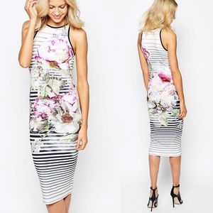 Floral Midi Dress Bodycon Striped Peony Ted Baker